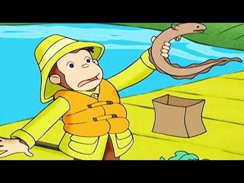 Peter Pedal Peter Pedal fanger en ål Sæson 1 Børn Film Film til Børn