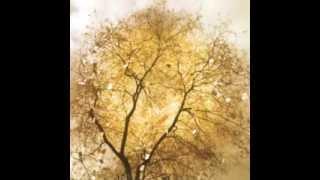 Ravel - Piano Concerto in G - II Adagio Assai / Arturo Benedetti Michelangeli