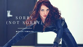 Gambar cover Sorry (Not Sorry) || Marvel Females