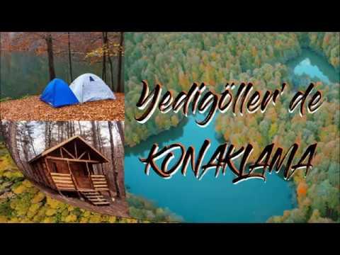 Yedigöller Konaklama: Bungalov Ağaç Evler Ve Kamp Yeri