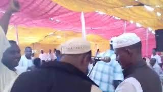 كباشي ابو صلاح