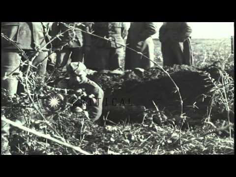 Germans soldiers lying dead in a street in Anzio, Italy during World War II. HD Stock Footage