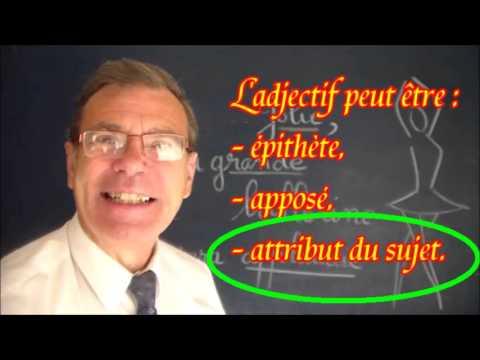 Adjectif qualificatif : épithète, apposé, attribut du sujet et accords : Grammaire
