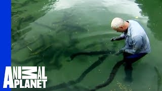 What Was Jeremy Wade's Most Frightening Catch? | River Monsters thumbnail
