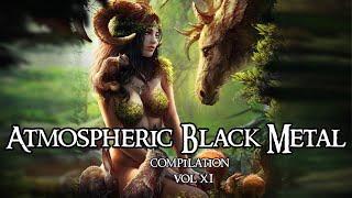 Atmospheric Black Metal compilation Vol XI