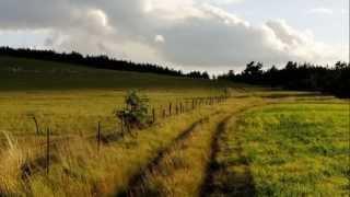 Take me home country roads (John Denver) - Tin whistle
