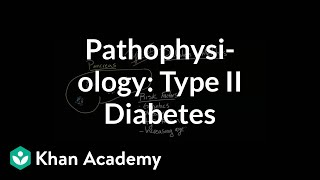 Pathophysiology - Type II diabetes | Endocrine system diseases | NCLEX-RN | Khan Academy(Visit us (http://www.khanacademy.org/science/healthcare-and-medicine) for health and medicine content or (http://www.khanacademy.org/test-prep/mcat) for ..., 2015-05-15T00:32:50.000Z)