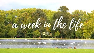 A Week in the Life   Sophie Abroad thumbnail