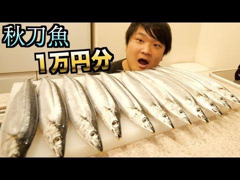 一万円分のサンマを買って爆食いが幸せすぎるんだが。。。