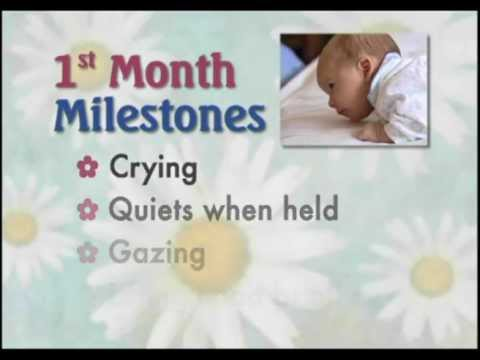 first 2 and 3 month baby milestones youtube