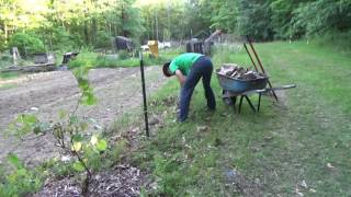Fishing ~ Mulching Garden ~ Homestead Cleanup