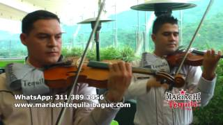 ''AUNQUE NO SEA MAYO'' (Cover) Mariachi TEQUILA Ibagué 3113893456