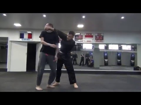 Pencak Silat Hugo Tronche - Hands motion training