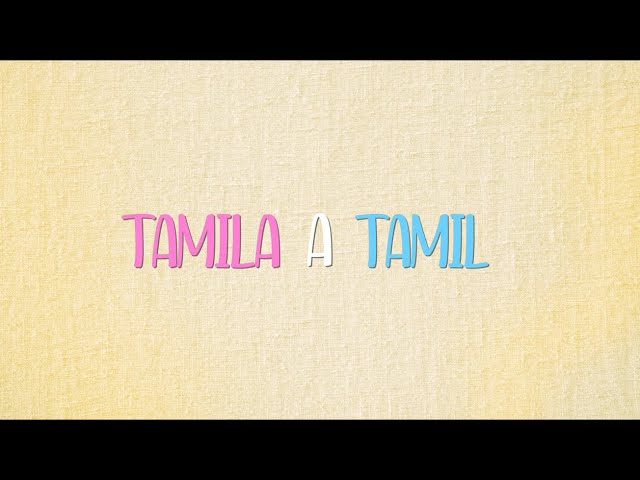 D.U.Bmusic - Tamila a Tamil (lyric video)