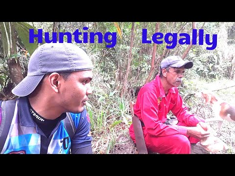 What are the Hunting Laws in Trinidad and Tobago?