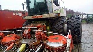hardkorowe koszenie kukurydzy ! HIT  SEZONU  SIECZKARNIA NA BLIŹNIAKACH