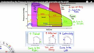 What is the Pressure Volume Loop Curve? Explained in 6 minutes!!!