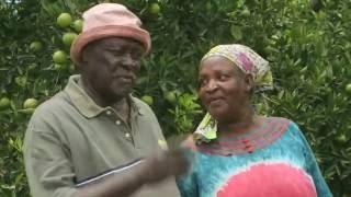 Shamba Shape Up Sn 06 - Ep 9 Mangoes, Chicken, Solar Lights (Swahili)