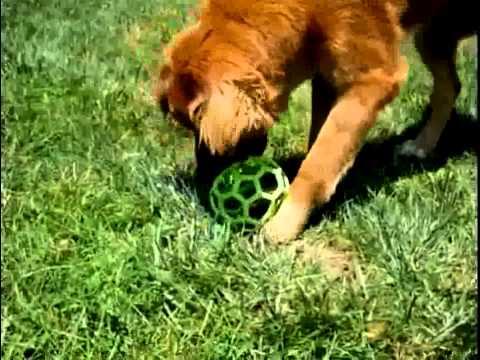 Hol-EE Roller Dog Toy