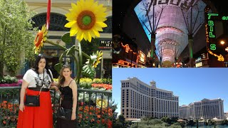 VEGAS VACATION - DAY 4: BELLAGIO, ANDY WARHOL EXHIBIT, FREMONT STREET