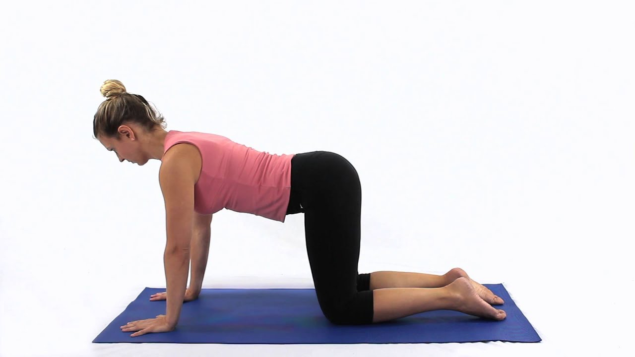 Image result for 4 point kneeling