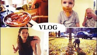 vlog Лизуны,закупка, Праздничные ребрышки, ЭКО моющее своими руками - Senya Miro