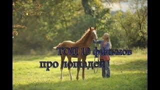 ТОП 10 фильмов про лошадей|BF