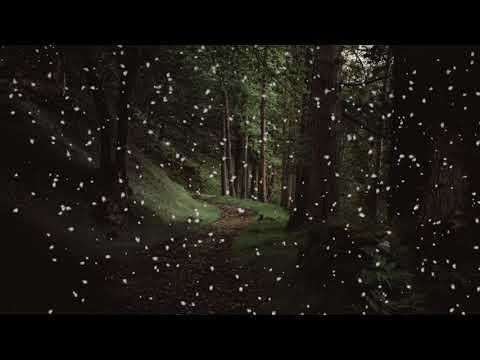 Citadel - Celestial Aeon Project - Aeon mp3