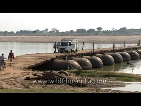 Chambal makeshift pontoon bridge