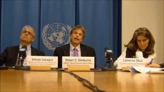 World Economic Situation and Prospects (WESP) 2013: CIS Economy
