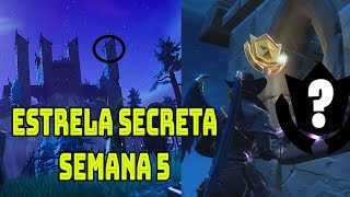 LOCATION STAR SECRET WEEK 5 SEASON 6-Fortnite Battle Royale