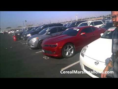 Used Car Auction Wholesale Bidding Video Buy Cheap Resale Cars
