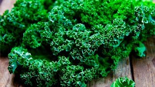 Day Is to every kale ok it eat