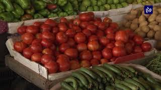 حماية المستهلك تدعو المواطنين إلى مقاطعة شراء البندورة أسبوعا