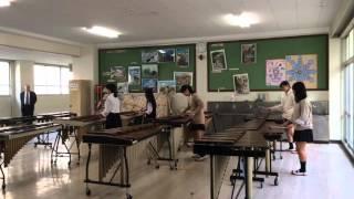 横浜市内で一番敷地面積が広い学校ってどこ?