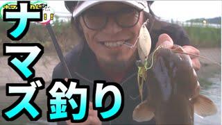 ルアーでナマズ釣りに初挑戦! thumbnail