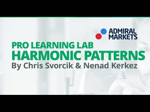Pro Learning Lab: Introduction to Harmonic Patterns