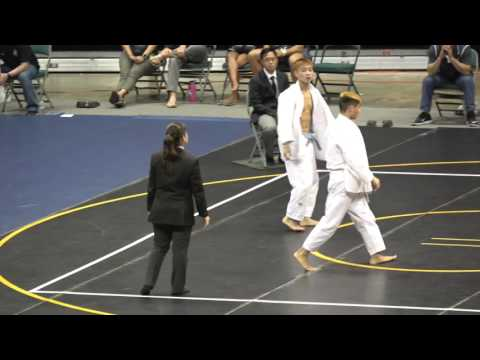 2016 HHSAA Judo Championships