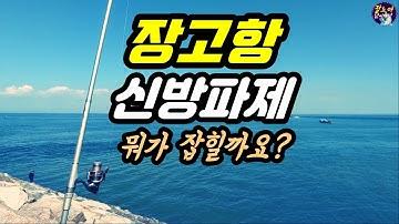 [장고항] [원투낚시] 시작은 미약했으나 그 끝은 창대하리라!  #장고항 신방파제 #삼길포 좌대낚시