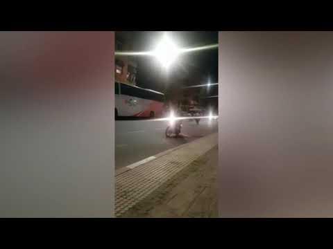 سباقات الدراجات النارية تؤرق ساكنة أحياء بمراكش