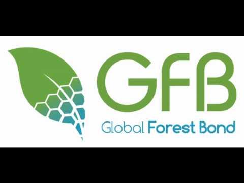 Global Forest Bond - Jornal da Cultura