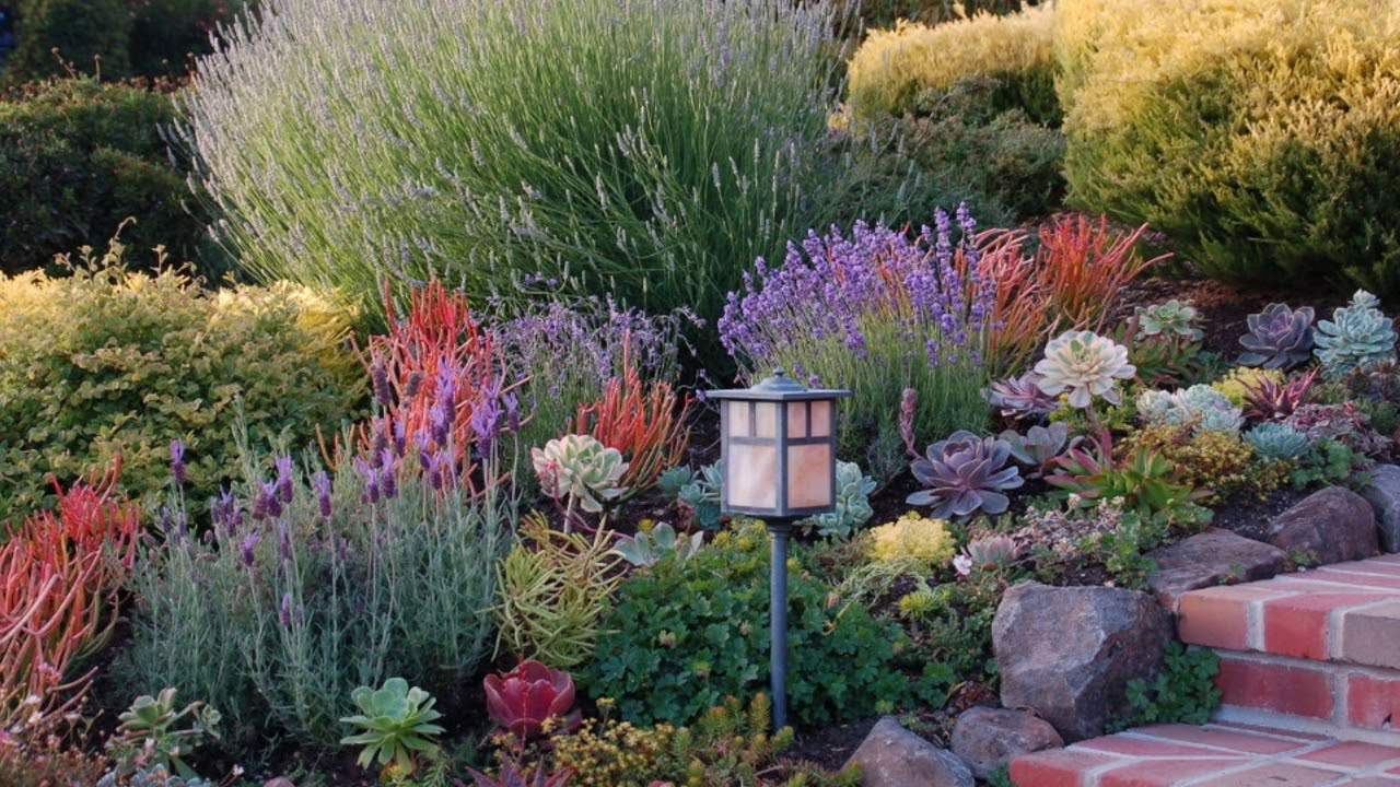 Landscaping Small Front Yards With Native Plants ... on Small Landscape Garden Design  id=53270