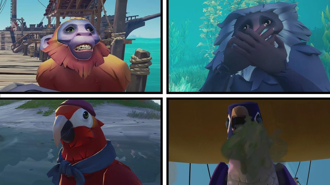 Sea Of Thieves Pets Gameplay Youtube