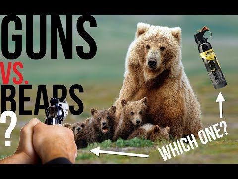 Bears vs Handguns: Defending Yourself in Bear Country