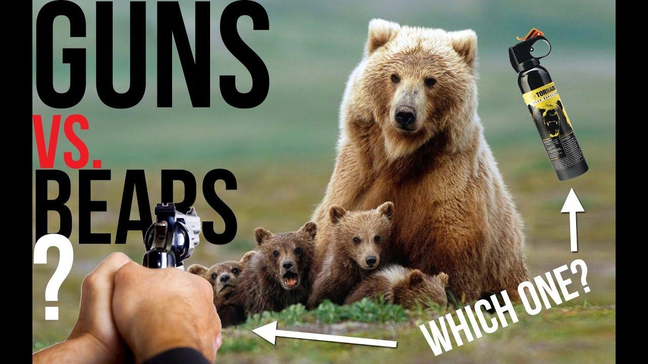 Bears vs Handguns: Defending Yourself in Bear Country