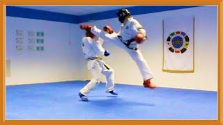 Taekwondo Sparring Session (Ginger Ninja Trickster)