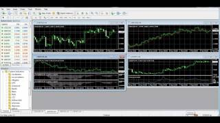 LiteForex video tutorial: Terminal pre-starting procedures (MT4)