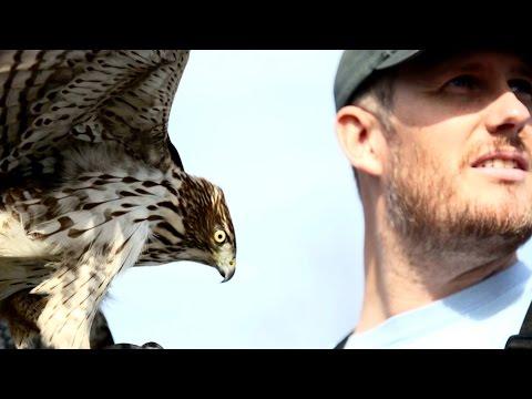 how to make a falconry hood