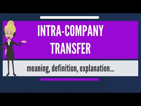 What Is Intra-Company Work Permit?