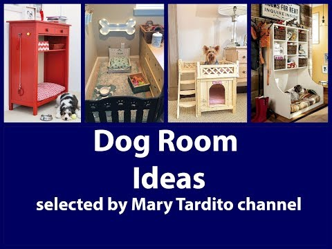 Dog Room Ideas – Pet Friendly Home Decor Inspiration